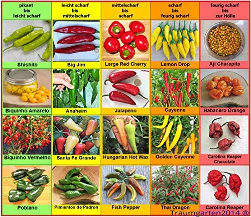 Chili Set 20 Sorten einzelnd verpackt von pikant bis extrem scharf Chilisamen Set Samen aus aller Welt Peperoni