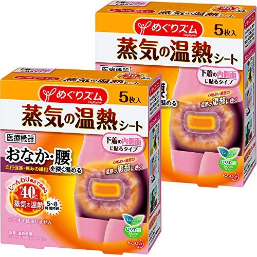 【まとめ買い】 めぐりズム 蒸気の温熱シート 下着の内側面に貼るタイプ 5枚入×2個まとめ買い