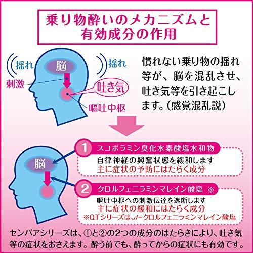 【第2類医薬品】センパアプチベリー10錠