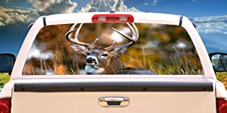 SignMission Deer 2 Rear Window Graphic Back Truck Decal SUV View Thru Vinyl car, 16