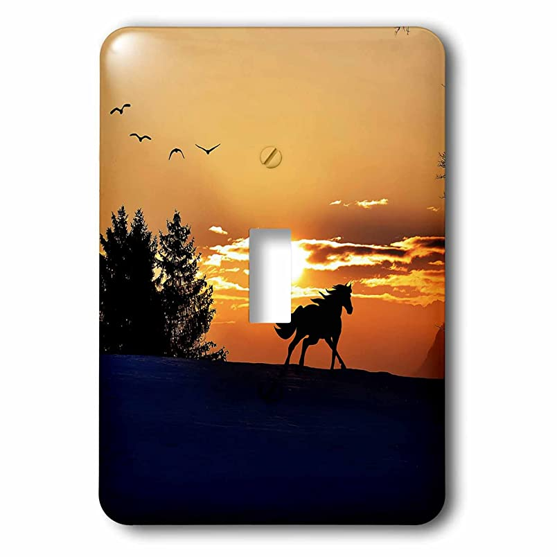 3dRose lsp_236678_1 Wonderful Sunset with Horse Toggle Switch vh003653096
