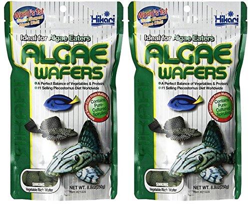 Hikari Usa Inc AHK21328 tropical Algae Wafer 8.8-Ounce [2-pk]