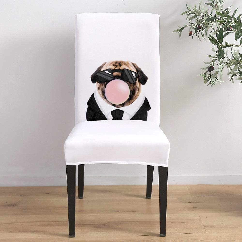 Dining Popular Bargain Room Stretch Chair Cover Slipcover In Puppy A Funny Suit