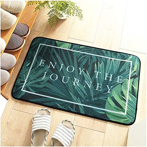 TSWCBYY Bodenmatte Teppich, Trend Hause Schlafzimmer Tür Matte, Küche Saugfähige Matte Bad Matte, Polyamidfaser / 60 * 90 cm,B