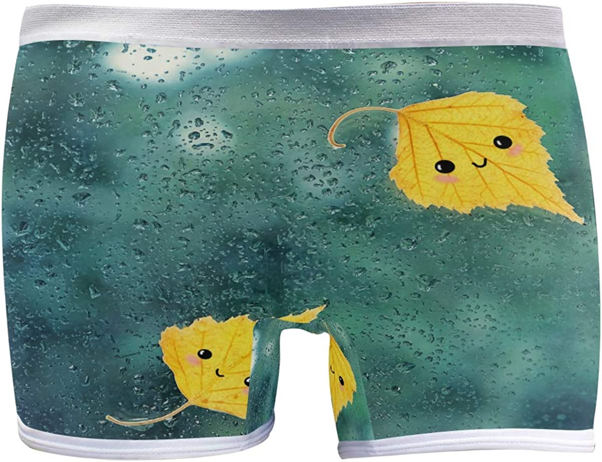 SLHFPX Womens Underwear Boxer Direct sale of manufacturer Briefs Yellow Leaves On Wet Autumn Baltimore Mall