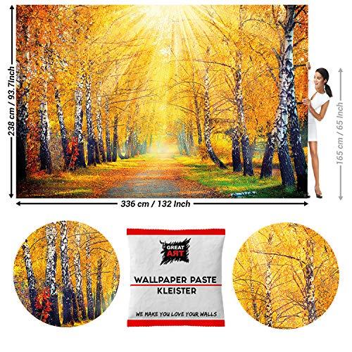 GREAT ART Fototapete Goldener Herbst Birken Allee 336 x 238 cm – Waldweg Wald Bäume Natur Landschaft Forst Laub Wandtapete Dekoration Wandbild – 8 Teile Tapete inklusive Kleister