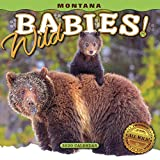 2020 Montana Wild Babies! Mini Wall Calendar