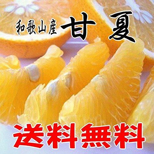 和歌山県産 爽やかな美味しさ 甘夏 (あまなつ) 10kg