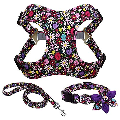Homeura French Bulldog Harness Leash and Collar Set Printed No Pull Dog Harness Vest Leash Collar Set for Small Medium Large Dogs Size - L
