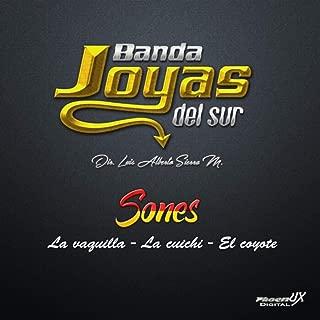 Sones: La Vaquilla / La Cuichi / El Coyote