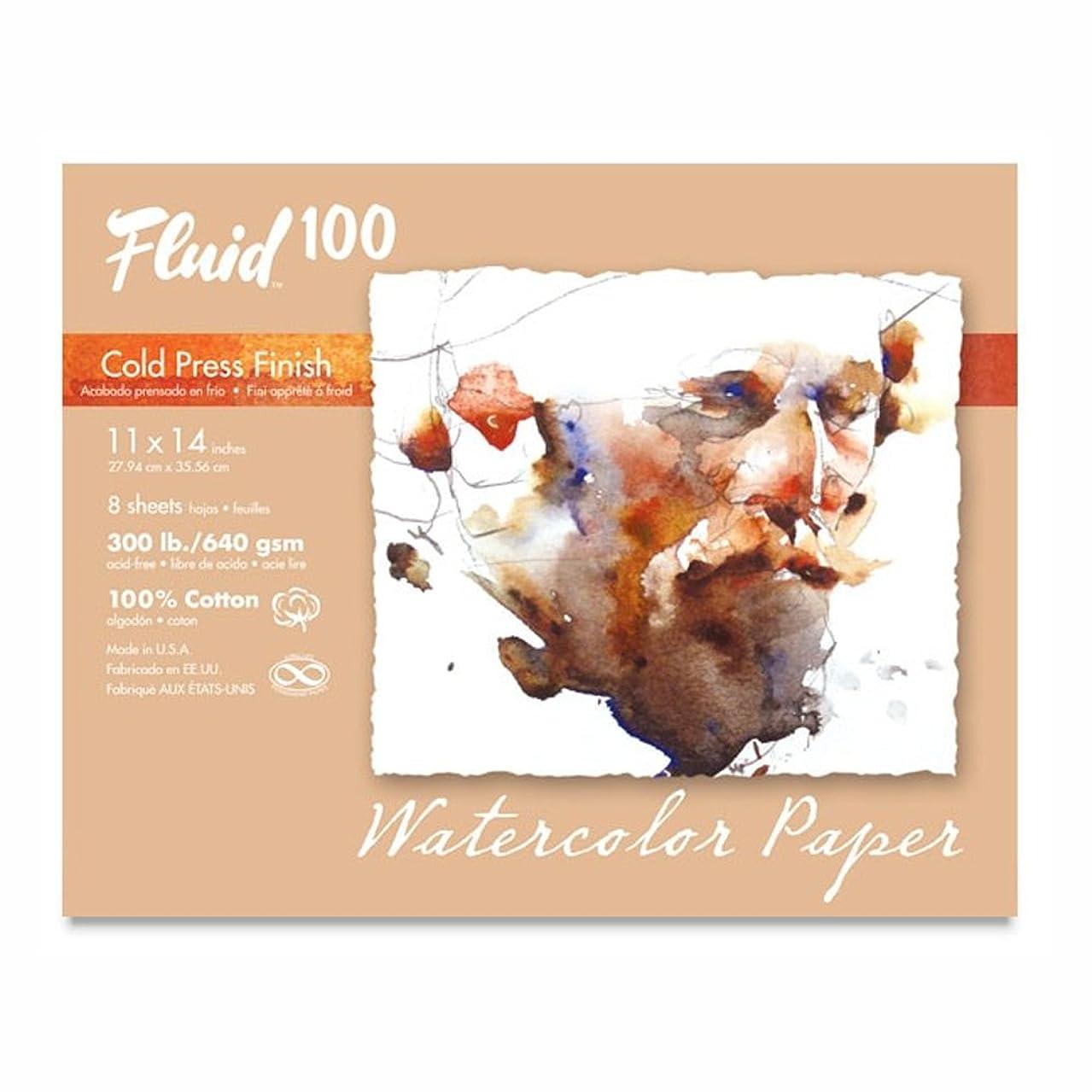 Handbook Paper Fluid 100 Watercolor Cp 300Lb Pochette 11X14