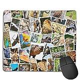 Joseph Mouse Pad,Non Slip Waterproof Rubber Base Mousepad for Laptop,Awesome Animal Polaroid
