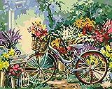 Lienzo de Bricolaje de Pintura al óleo para Adultos niños Bicicleta de flores Pintura por número Kits Pintura Acrílica Regalo De Decoraciones para el hogar(Sin Marco40 x 50 cm)