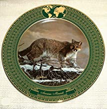 KINGDOM OF GREAT CATS COUGAR COLLECTOR PLATE BY CHARLES FRACE