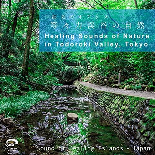 Healing Sounds of Nature in Todoroki Valley,