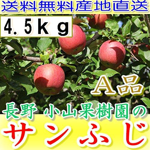 産地直送 長野産 減農薬 有機肥料栽培 サンふじ 林檎 A品 約4.5kg12〜23個入 完熟 リンゴ りんご楽ギフ_のし宛書 smtb-k w2