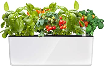 Rectangle Self Watering Planter with Water Level Indicator, Window Gardening Box, Indoor Home Herb Garden, Modern Decorati...