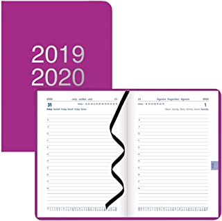 Letts Dazzle - Academic Planner, Day per Page with Appointments, August 2019 to July 2020, Sewn Binding, Multilingual, 5.8...
