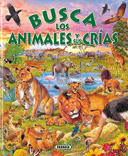 Busca Animales Y Sus Crias