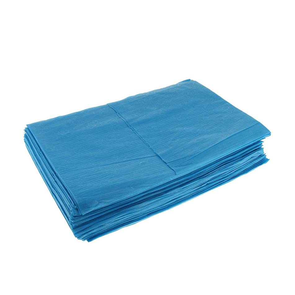 発行する縫い目ネストKesoto 10枚 使い捨てベッドシーツ 使い捨て 美容 マッサージ サロン ホテル ベッドパッド カバー シート 2色選べ - 青