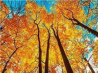 """番号でペイント 黄葉の森 3つの絵筆で絵筆を描く子供初心者大人のためのDIY油絵キット–家の壁の装飾のための16""""W x 20"""" Lフレームレス"""