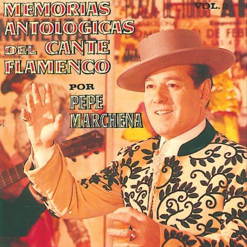 Guitarristas Flamencos Murcianos