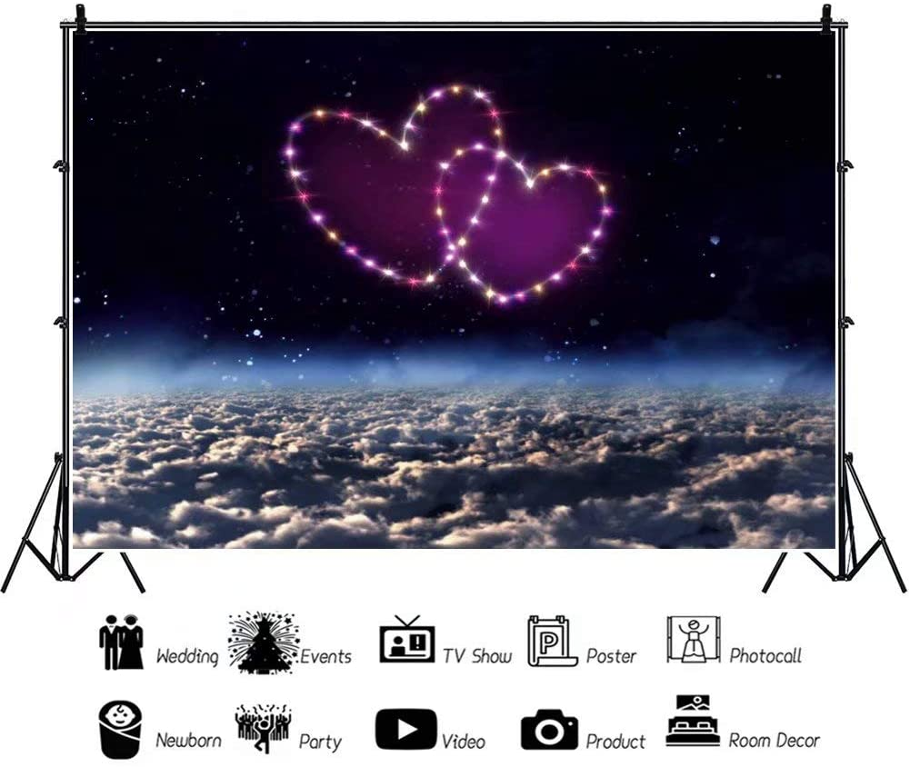 DaShan 14x10ft Valentines Day Love Heart Backdrop Love Romantic Wedding Engagement Anniversary Celebration Party Photography Background Girl Adults Anniversary Party Lovers Couples Photo Props