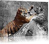 prachtvolle Tiger kämpfen schwarz/weiß Format: 100x70 auf Leinwand, XXL riesige Bilder fertig gerahmt mit Keilrahmen, Kunstdruck auf Wandbild mit Rahmen, günstiger als Gemälde oder Ölbild, kein Poster oder Plakat