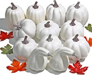 WsCrafts 12Pcs Assorted Sizes White Artificial Pumpkins for Halloween, Fall Harvest Festival Thanksgiving Autumn Ornaments