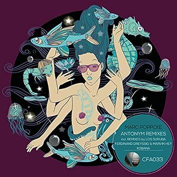 Antonym Remixes