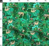 grün, Tiere, Tukan, Papagei, Regenwald, Faultier, Grün