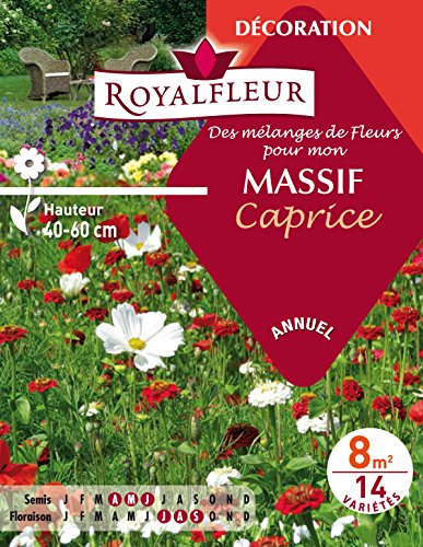 Royalfleur PFRE08697 Graines de Mélange de Fleurs mon Massif Caprice 8 m²