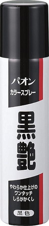 葉巻馬力有益パオン カラースプレー 黒艶 黒色 85g