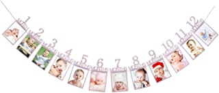 New Festival Party Supplies 1St Baby 12 Months Birthday Pull Flag Photo Wall Slogan Banner Month Photo Clip Flower(Gold Nu...