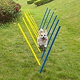 Pet Prime Outdoor Dog Obstacle Agility Training Exercise Equipment Kit Dog Agility Equipment Set - 12PCS Weave Pole Set