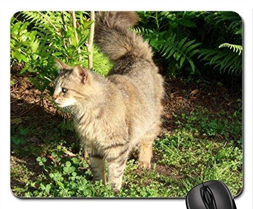 Pretty Furry Cat Mauspad, Mousepad (Katzen Mauspad)