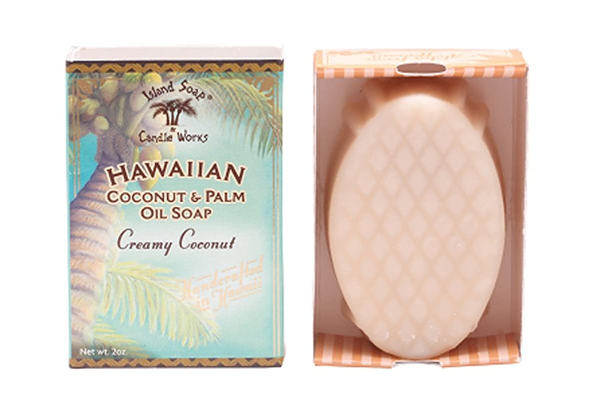 明らかにするハードウェア抽象化アイランドソープ ココナッツソープ ココナッツ 50g