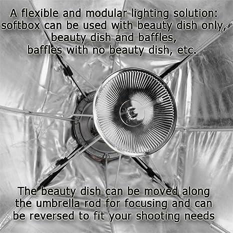 Fotodiox 10sbxec1256ez Profi Studio Lösungen Ez Pro Kamera