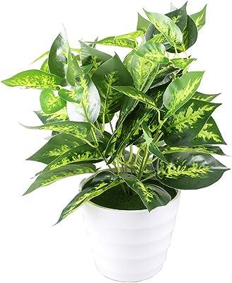 Arbeflo ポトス鉢植え、緑の鉢植えの植物、鉢植えの植物、プラスチック製のポット、人工の花や植物は、決して植物を退色させません (おもと)