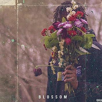 Blossom (Delluxe Edition)