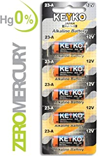 Best 12v remote control battery Reviews