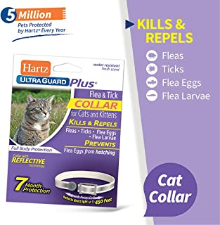 hartz cat collars