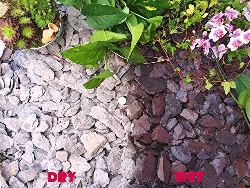 Gravier Gravillons Pierre Ardoise Dissuader les mauvaises herbes Jardin Patio Allée Plante Dessus – 40 mm Prune Ardoise, 10KG