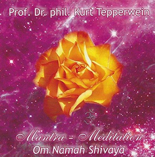 Om namah Shivaya - Mantra Meditation
