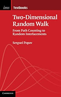 Two-Dimensional Random Walk: From Path Counting to Random Interlacements