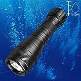 Odepro WD41 1000 Lumen Einspielermodus Taschenlampe Tauchleuchte Unterwasser 150m wasserdicht...