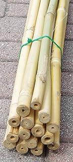 Cañas de bambú para sujetar hortalizas y otros usos, 150 cm