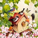 20 Servietten Belebtes Vogelhaus/Vögel/Tiere/Tiermotiv/Frühling 33x33cm