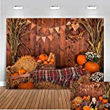 Fall Thanksgiving Photography Backdrop Rustic...