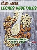 Cómo hacer leches vegetales: Tutorial muy fácil para hacer tus bebidas vegetales caseras con legumbres, cereales, frutos secos y semillas. (Gastronomía Vegana)